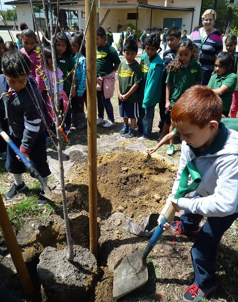 Arbor Day Franklin School 2014